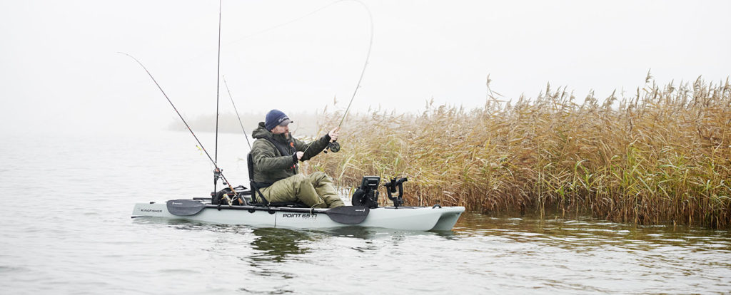 Специальная цена на Kingfisher — 75 000 рублей
